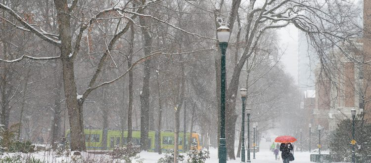 A park with many trees is covered in snow, while pedestrians walk by and a streetcar passes in the distance